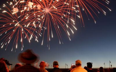 Firework Distress in Dementia Patients and Elderly Loved Ones